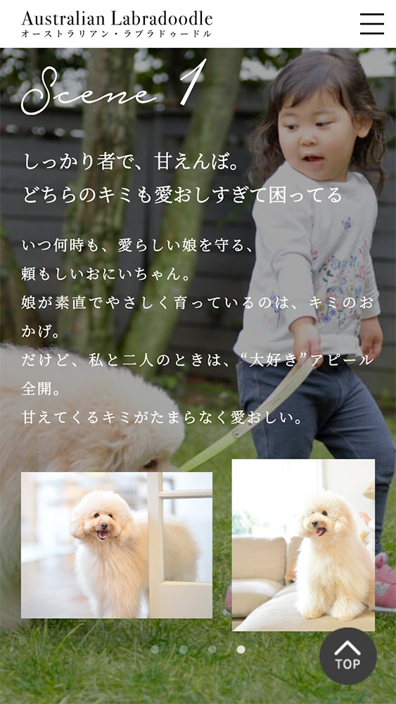 AL犬SPサイトの「ALと暮らす」ページのデザイン。